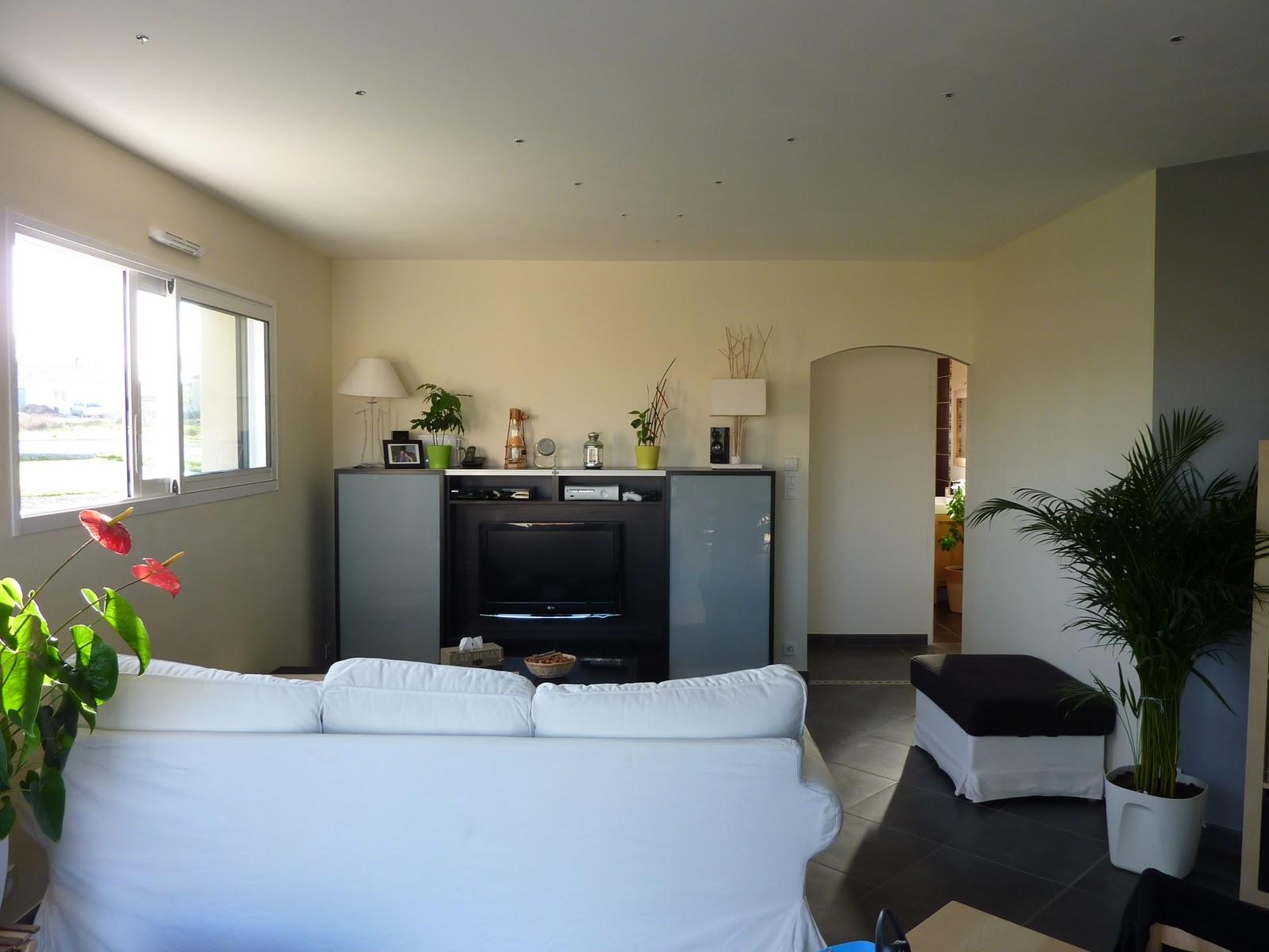 couleur piece de vie id e inspirante pour la conception de la maison. Black Bedroom Furniture Sets. Home Design Ideas