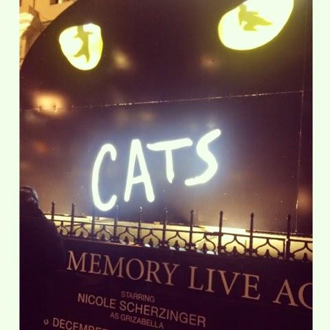 nicole-scherzinger-cats