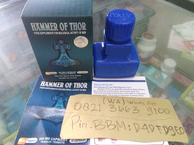 agen hammer of thor asli pekalongan other indonesia telepon 62