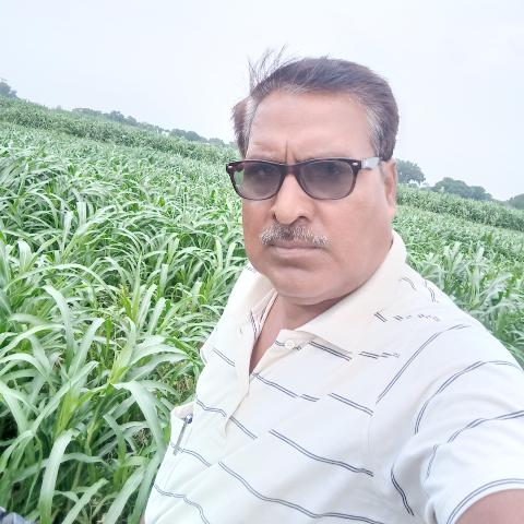 Aditya Tripathi's image