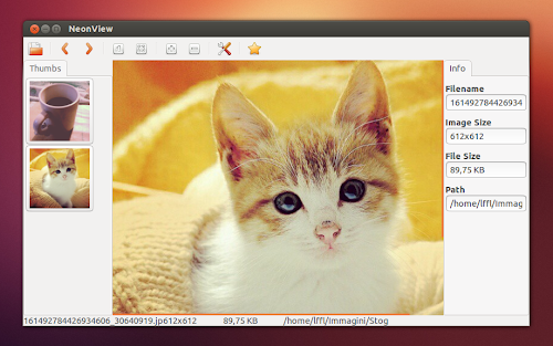 NeonView su Ubuntu