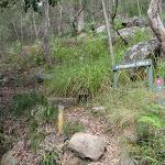 Birwanna Track above Apple Tree Bay (118132)
