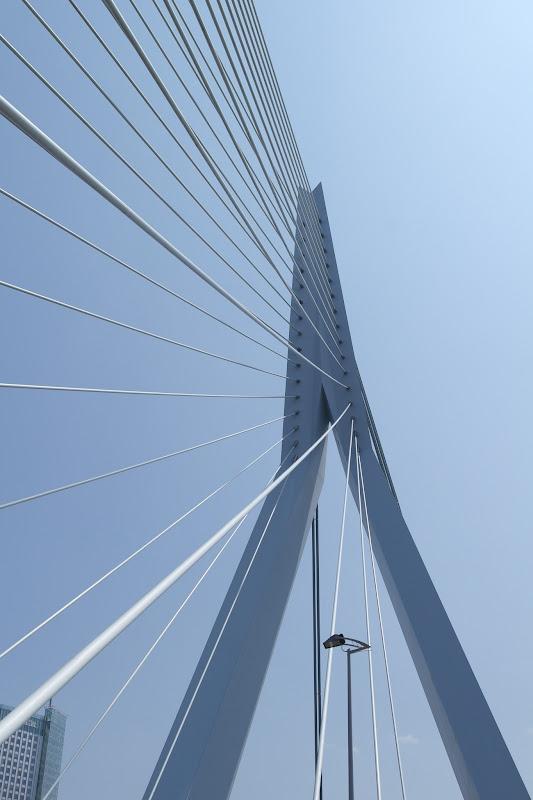 Rotterdam ponte