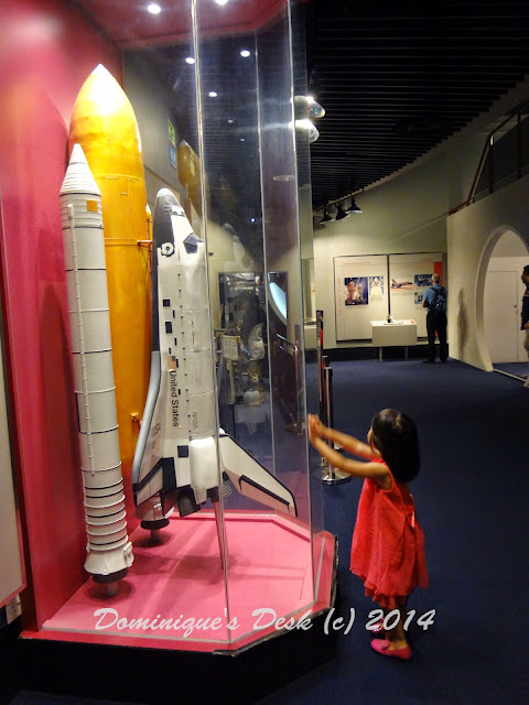 Tiger girl looking at the model rocket.