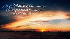 Salmo 8.9