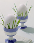 Green grass in eggcup
