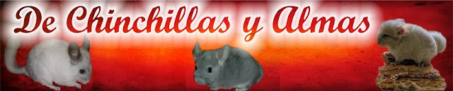 De Chinchillas y Almas
