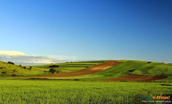 świętokrzyskie krajobrazy - pola i pagórki