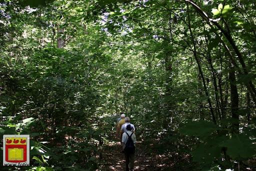 excursie in bossen  van overloon 18-08-2012 (35).JPG