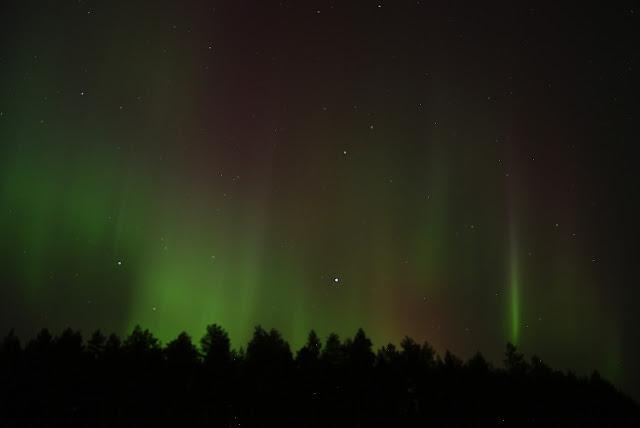 aurore%2520rideaux%2520niiles%2520DSC01307_filtered.jpg