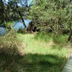 Boardwalk section beside Mooney Mooney Creek (373441)