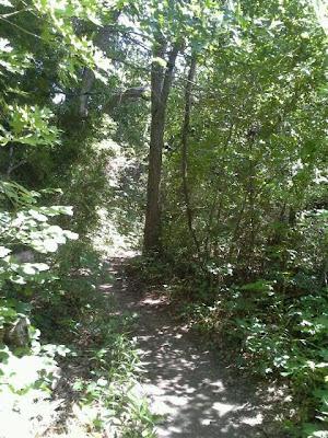 Spring Creek Forest Park Preserve