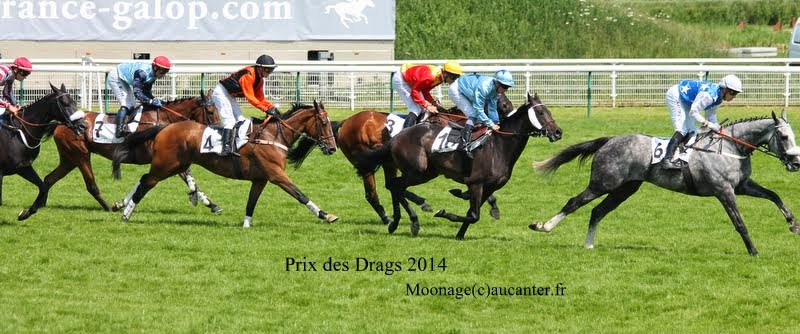 Photos Auteuil 8-06-2014  IMG_1789