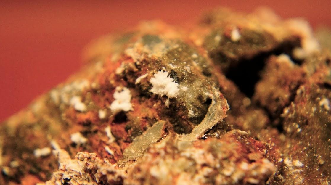 Colección de Minerales Fluorescentes - Página 3 Estroncianita%252C+Pulpi%25CC%2581%252C+Almeri%25CC%2581a.