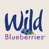 WildBlueberries4u