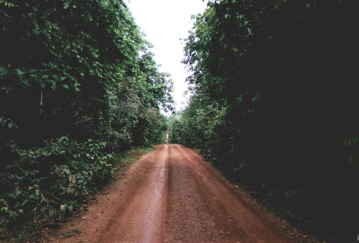Transamazonica zwischen und Itaituba und Jacareacanga