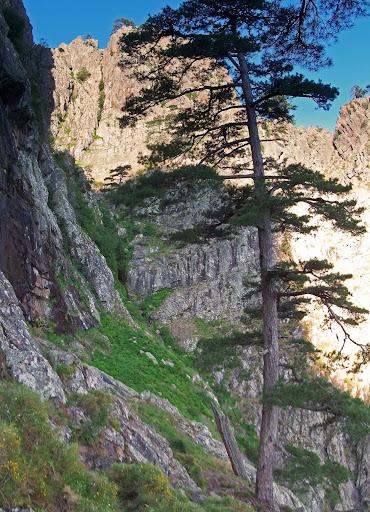 La vire de descente de la 1ère partie de l'Andadonna