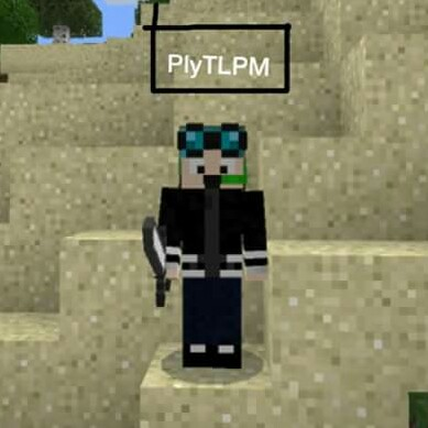 PlyTLPM //TheLaPisMinecraft review