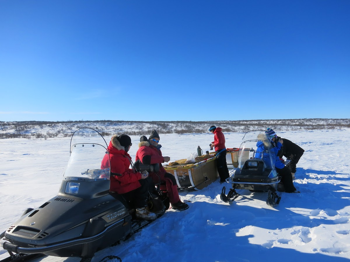 Lunch break in the Arctic