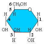 numeración de la glucosa
