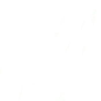 Ali Ajwad