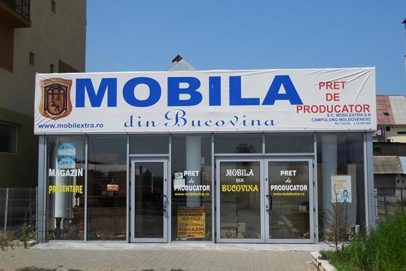 Mobilă din Bucovina