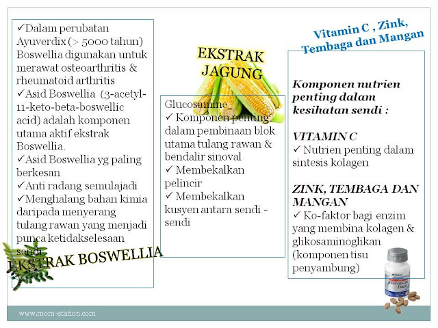 shaklee advanced joint health tablet (ajht) Hilangkan Sakit Sendi Dengan Shaklee Advanced Joint Health Tablet (AJHT) 3