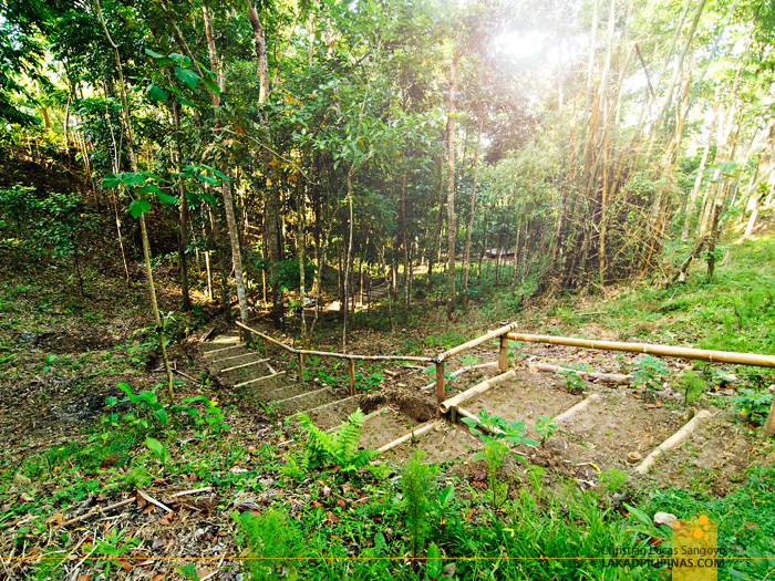 Nature Trails at Talisay's Melba's Farm