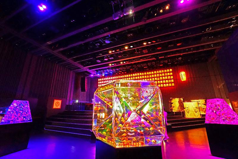 アートアクアリウム 日本橋 写真11