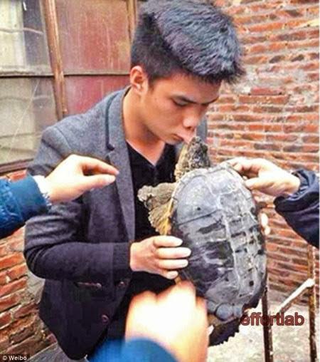 lelaki-cium-kura-kura