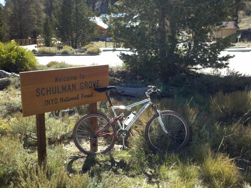 White Mountain Peak • Schulman Grove