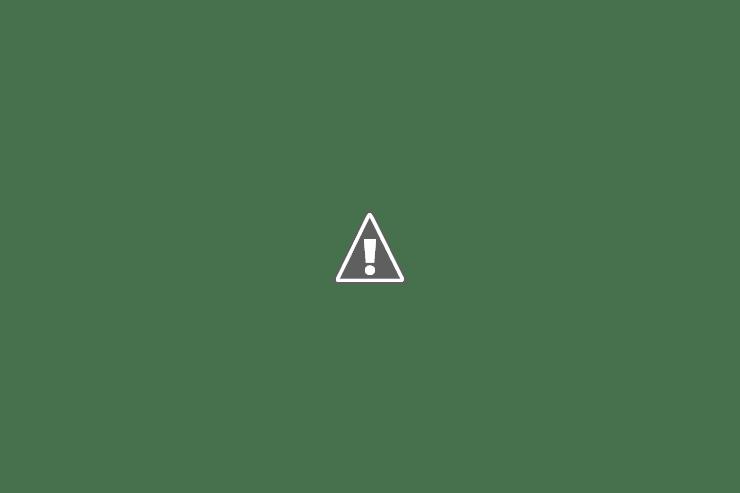 Наталья Потеха АКЕВ Конференция