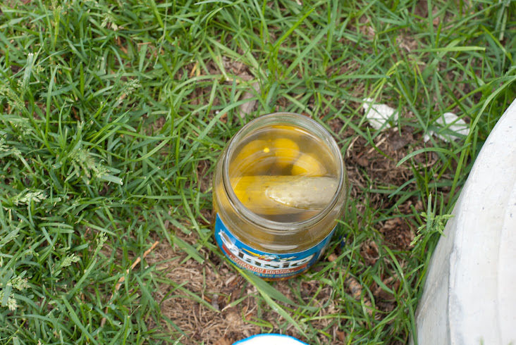 Pickle jar abandoned in the park
