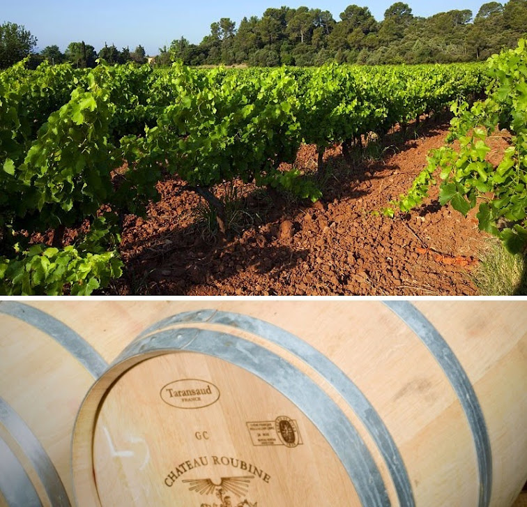 oenotourisme+en+dracenie-var-provence-vignes-vins+de+provence-cotes+de+provence