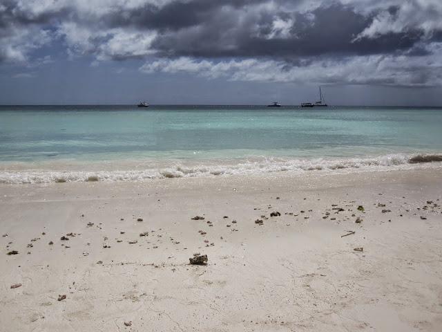 Zanzibar's natural beauty