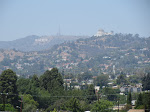 View of the Hollywood Hills from our hood