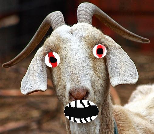 https://lh5.googleusercontent.com/-Qsra7tg-Dk0/Ujw9dSLrOFI/AAAAAAAAAxQ/V2GpPpyZK4k/w507-h441-no/3.crazy-goat.jpg