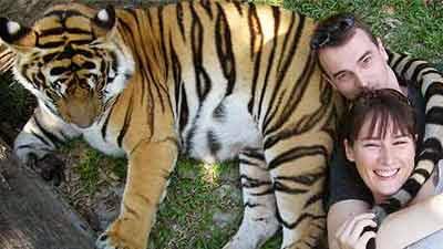 tiger-kingdom-chiangmai