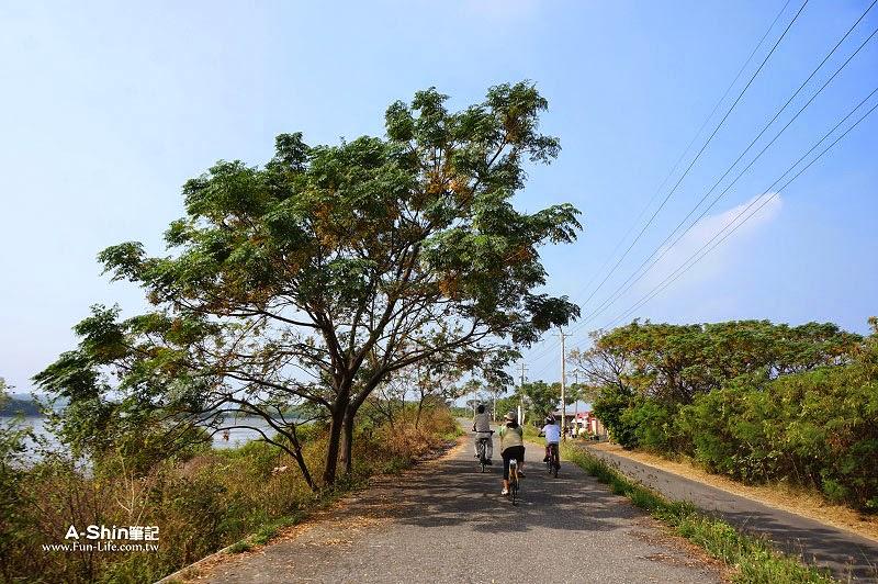 台江國家公園自行車道-26