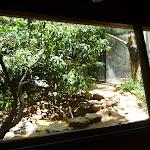 Wildlife hide at the Wildlife Exhibits in Blackbutt Reserve (402037)