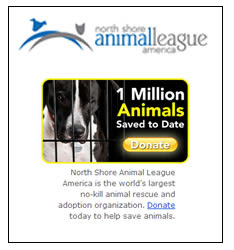 North Shore Animal League -The world's largest no-kill animal rescue and adoption organization