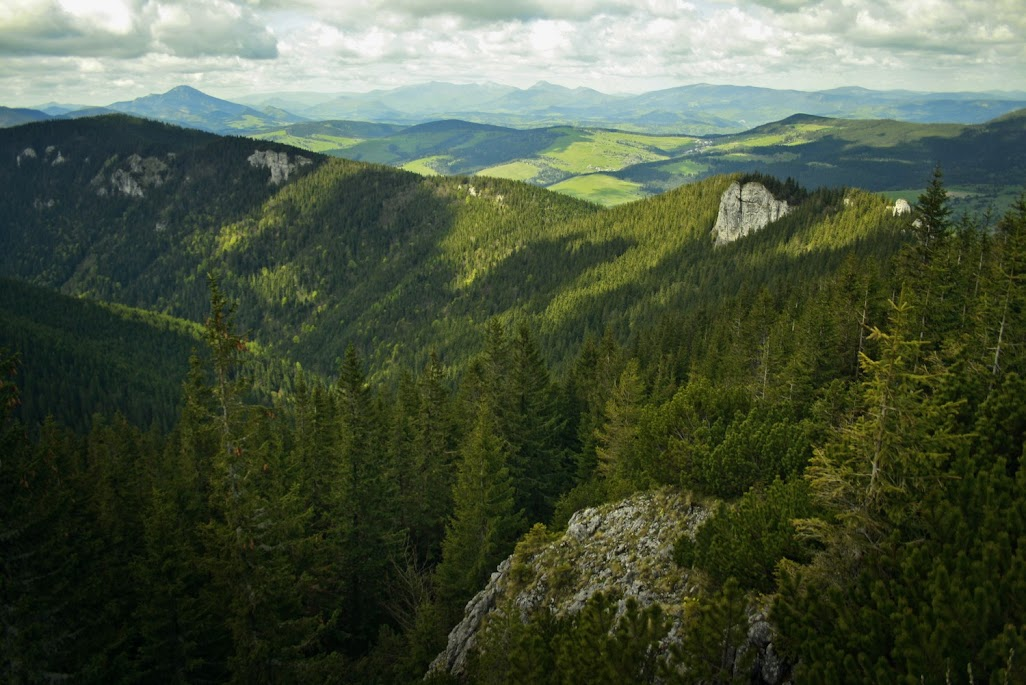 Sucha Dolina Sielnicka i Południca