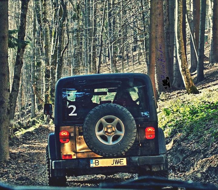 jeep zamora baiului