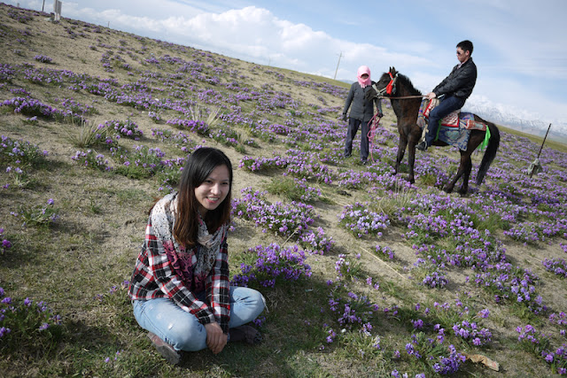 young woman sitting amongst flowers and a young man riding a horse near Qinghai Lake