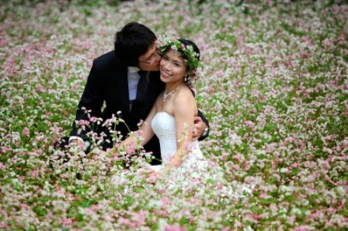 kham pha ban do hoa tam giac mach5 Khám phá bản đồ hoa tam giác mạch
