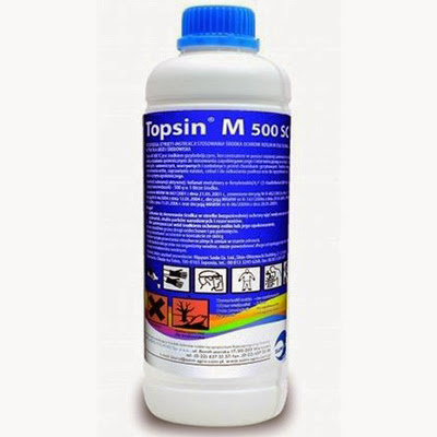 Топсин М 500СЦ купить