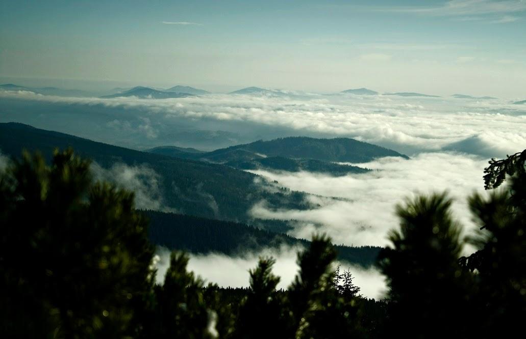 Szlak na Babią Górę