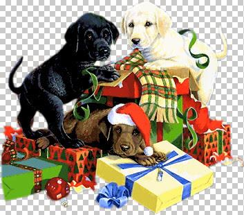Christmas Rascals-jmk.jpg
