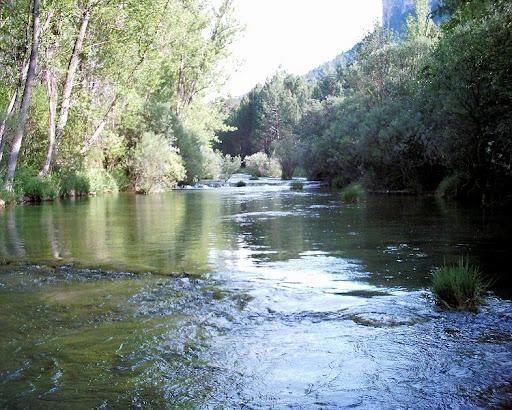 Río Tajo. Francisco Muela