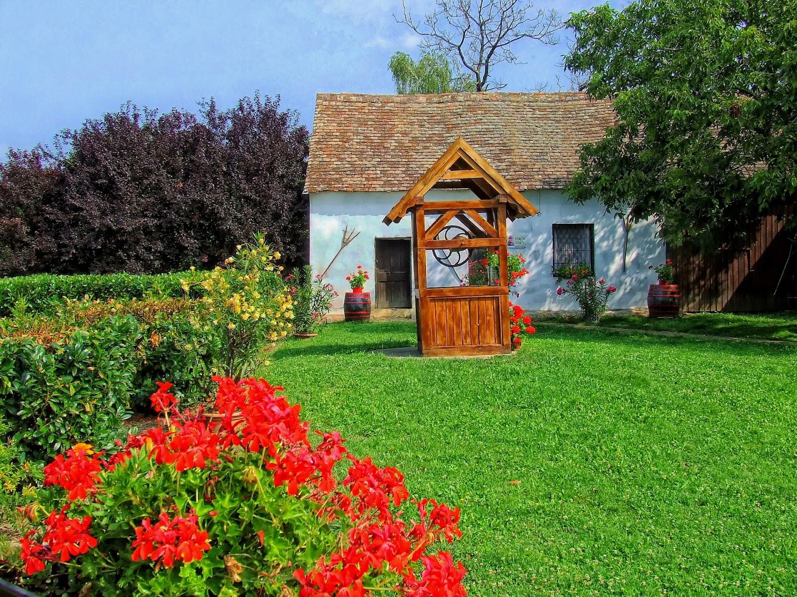 Oude huisje met gras